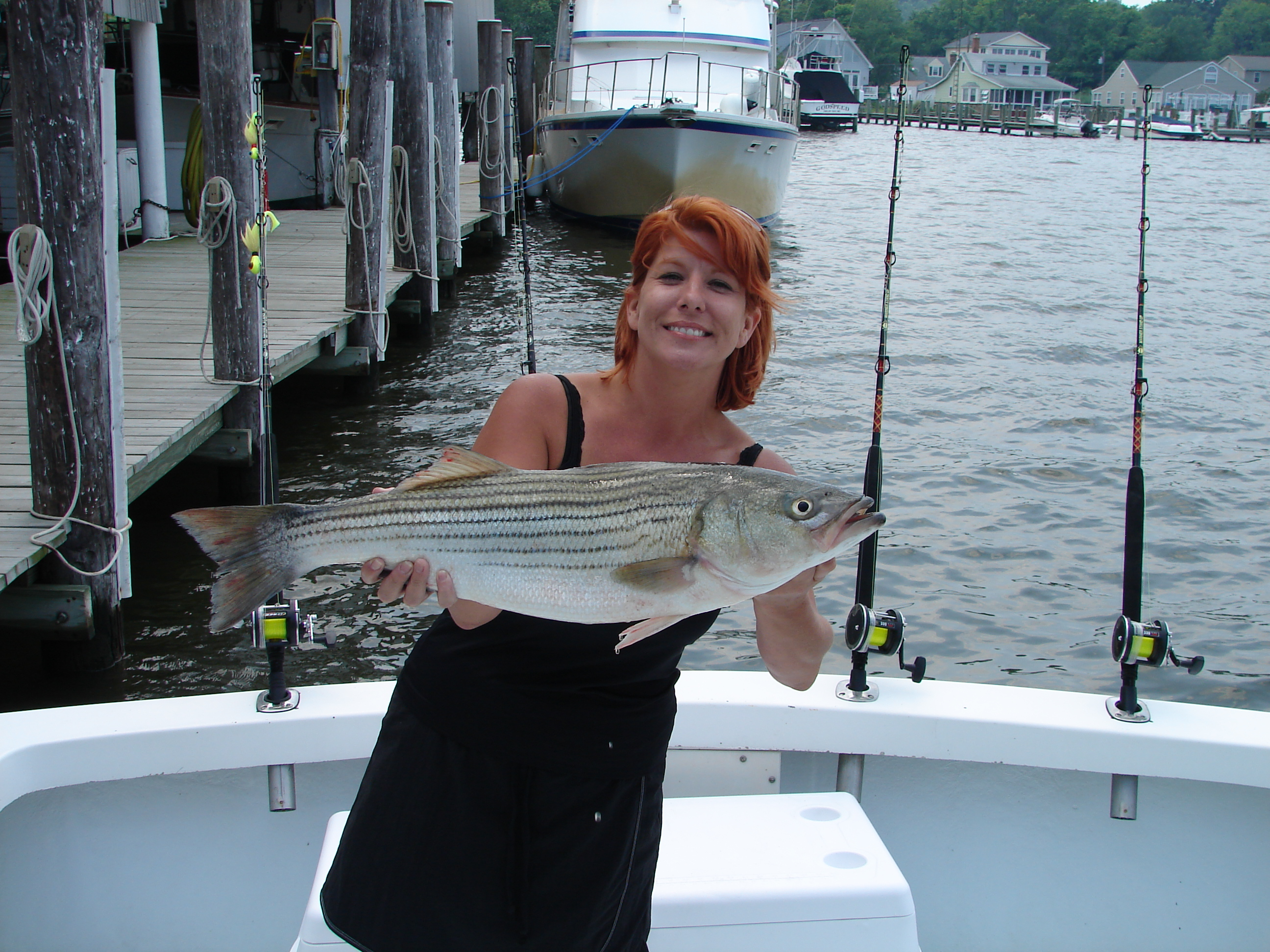Catch Striper Fish from Fishing Charter
